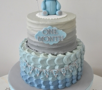 Baby one month cake