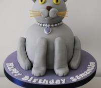 cat-birthday-cake